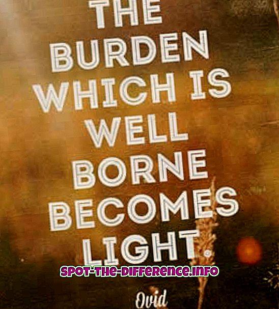 Forskel mellem Born og Borne