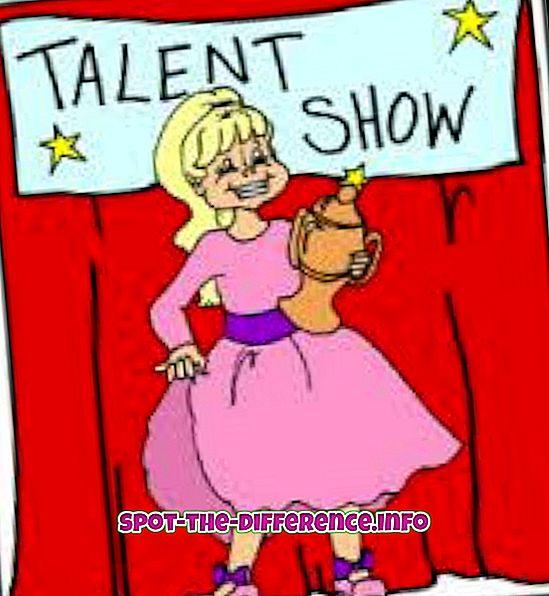 ero: Talentin ja taitojen välinen ero