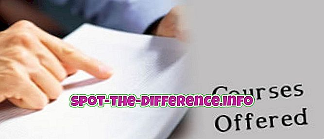 forskjell mellom: Forskjellen mellom kurs og program