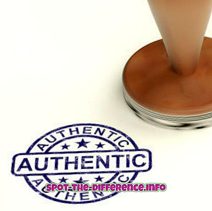 rozdiel medzi: Rozdiel medzi autentickým a originálnym