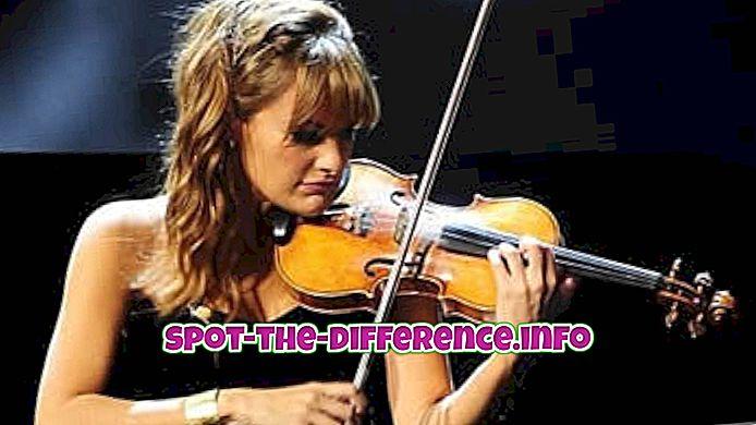 rozdíl mezi: Rozdíl mezi hudebníkem a skladatelem