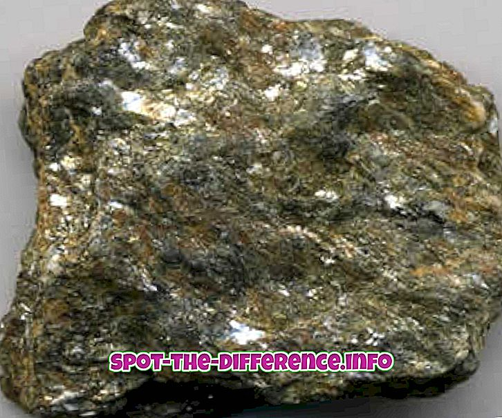 との差: 片岩と片麻岩の違い