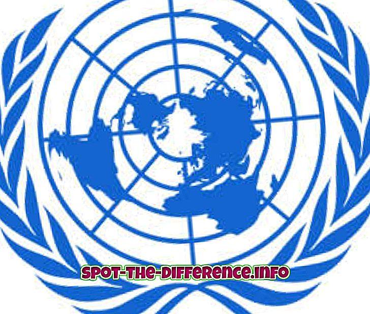 Rozdiel medzi OSN a WTO