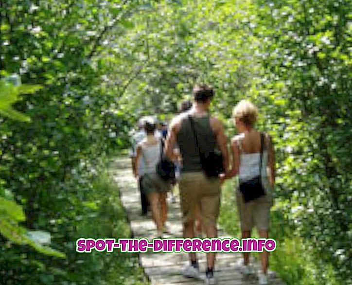 rozdiel medzi: Rozdiel medzi turistikou a trekkingom