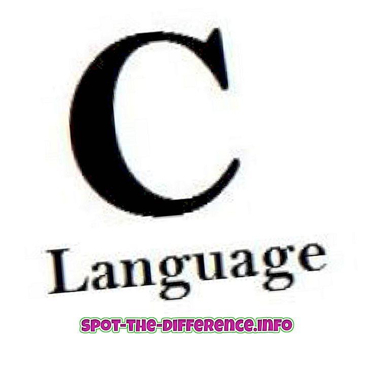Unterschied zwischen: Unterschied zwischen C und C #