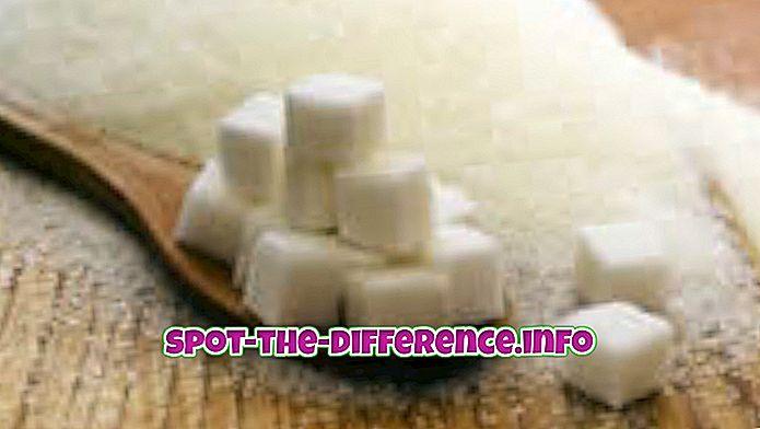 Différence entre le sucre et la mélasse