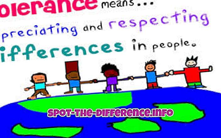 razlika između: Razlika između tolerancije i netolerancije