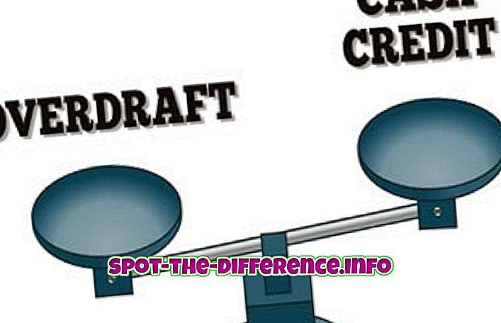 sự khác biệt giữa: Sự khác biệt giữa Tín dụng tiền mặt và thấu chi