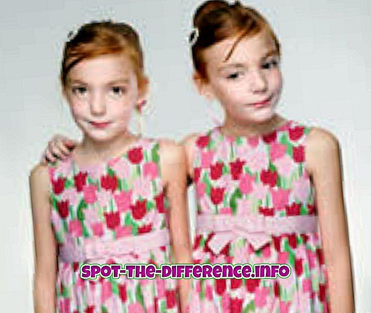 Differenza tra gemelli e cloni