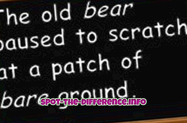 rozdíl mezi: Rozdíl mezi Bare a Bear