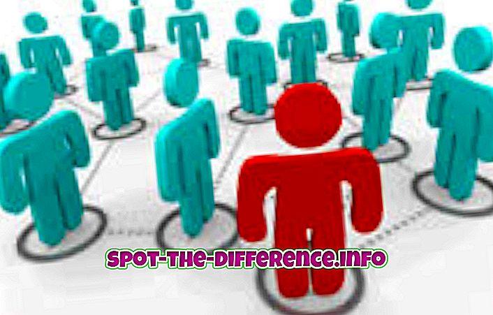 rozdíl mezi