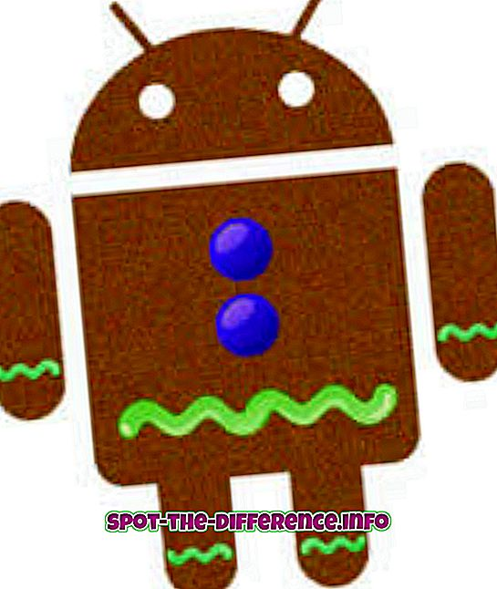Perbedaan antara Android Gingerbread dan Ice Cream Sandwich