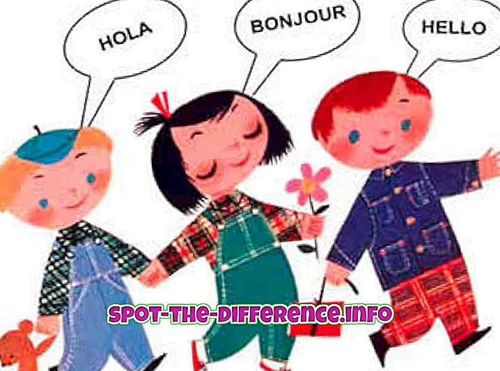 rozdíl mezi: Rozdíl mezi mateřským jazykem a prvním jazykem