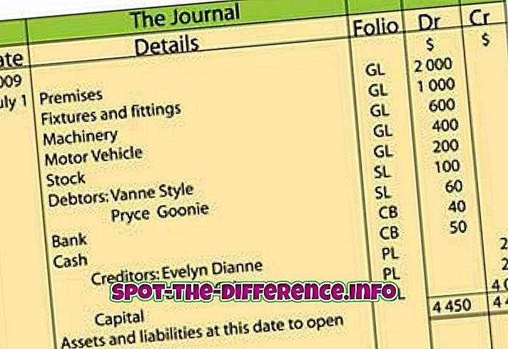 Forskjellen mellom Journal og Ledger