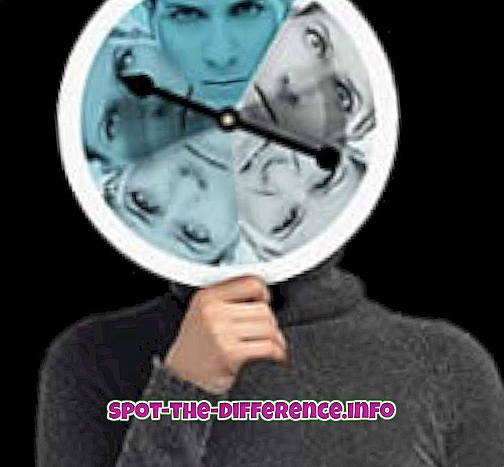 Unterschied zwischen: Unterschied zwischen Borderline und Schizoaffective Disorder