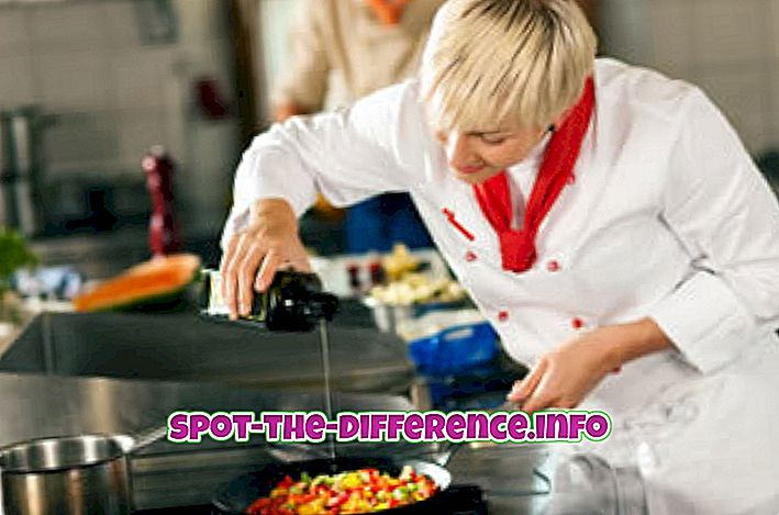 rozdiel medzi: Rozdiel medzi varením a slnečnicovým olejom
