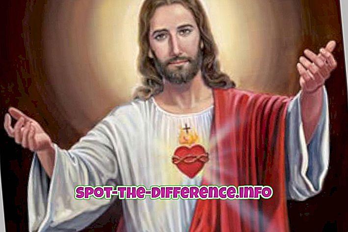 rozdiel medzi: Rozdiel medzi Ježišom a Mohamedom
