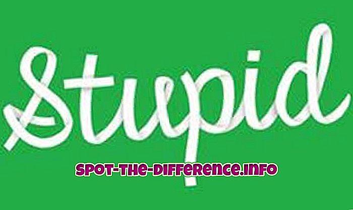 forskjell mellom: Forskjellen mellom dum, dum og Idiot