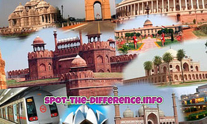 forskjell mellom: Forskjellen mellom Delhi og New Delhi