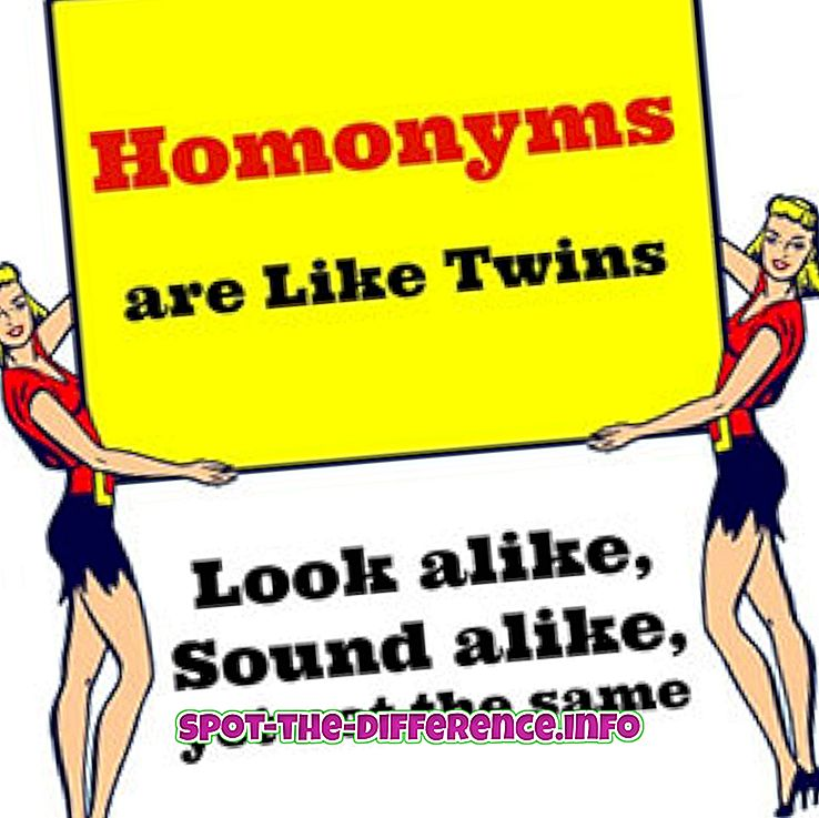 Rozdiel medzi Homonym a Homophone