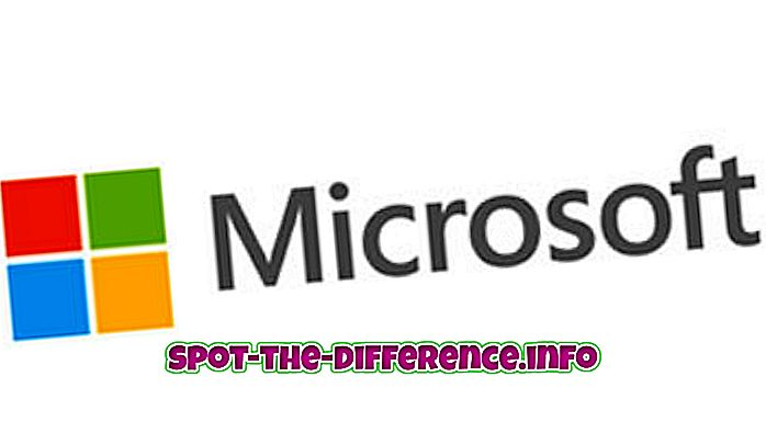 Differenza tra Google e Microsoft