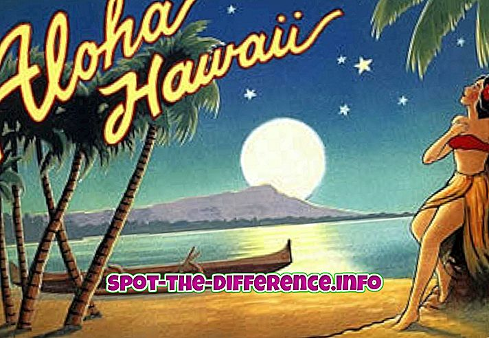 Differenza tra Hawaii e Caraibi