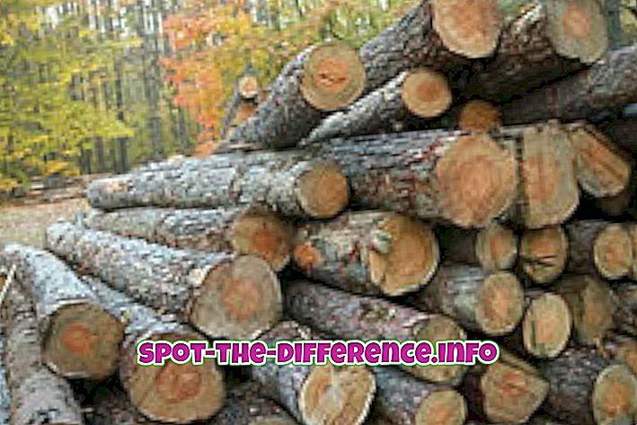 Verschil tussen hout en hout