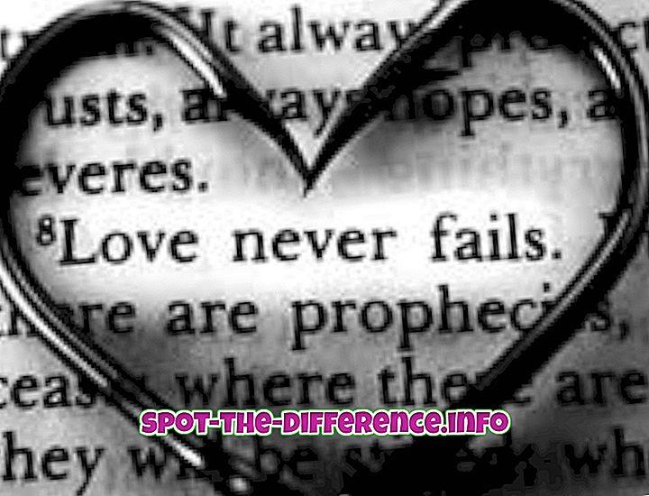 verschil tussen: Het verschil tussen liefde en verliefdheid