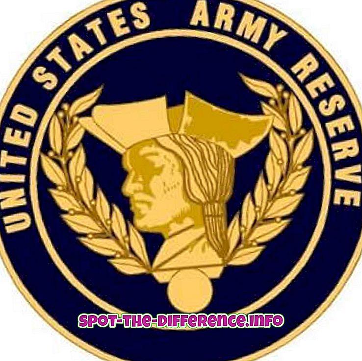 verschil tussen: Verschil tussen Army Reserve en National Guard