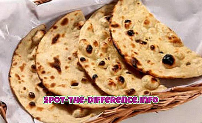 forskel mellem: Forskel mellem Roti og Naan
