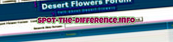 Rozdíl mezi fórem a blogem