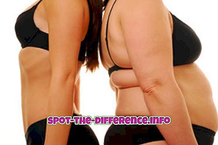 Unterschied zwischen: Unterschied zwischen Körpermasse und Körpergewicht