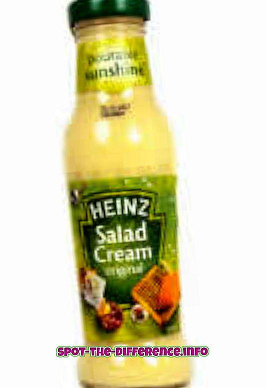 Erinevus salatikreemi ja Mayo vahel