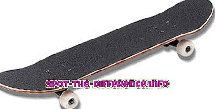 Forskel mellem Longboard og Skateboard