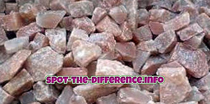 forskjell mellom: Forskjellen mellom havsalt og steinsalt