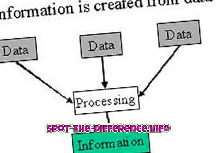 Starpība starp datiem un informāciju
