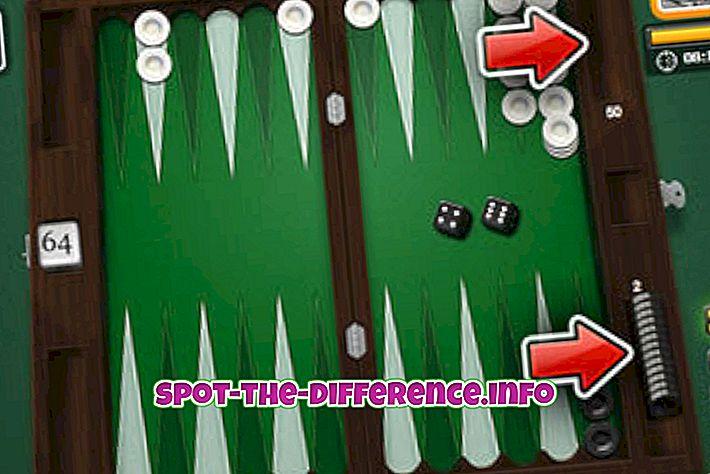 Verschil tussen Backgammon en Gammon