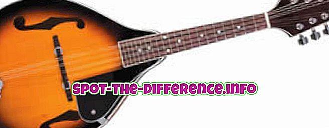 razlika između: Razlika između mandoline i ukulelea