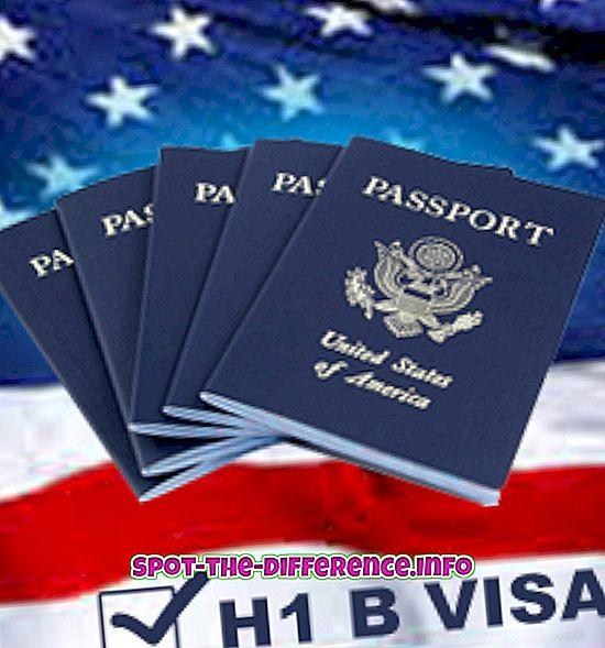 Diferența dintre Visa H1 și B1