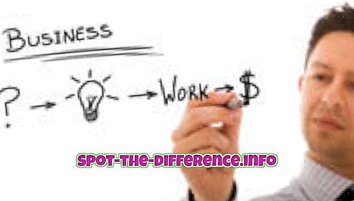 разлика между: Разлика между бизнеса и финансите