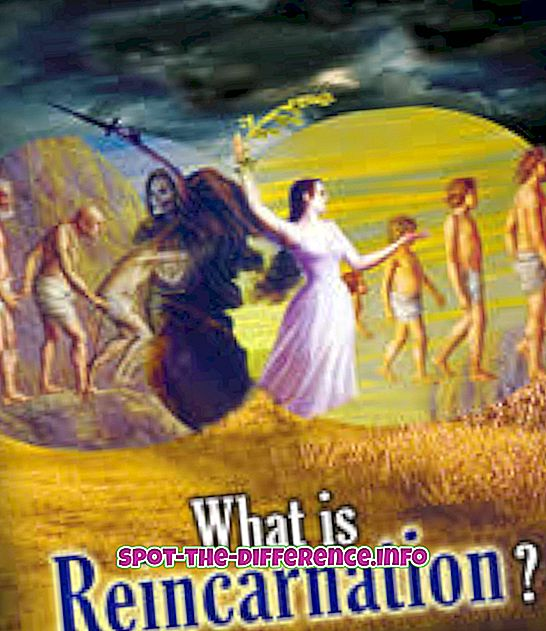 rozdiel medzi: Rozdiel medzi znovuzrodením a reincarnáciou