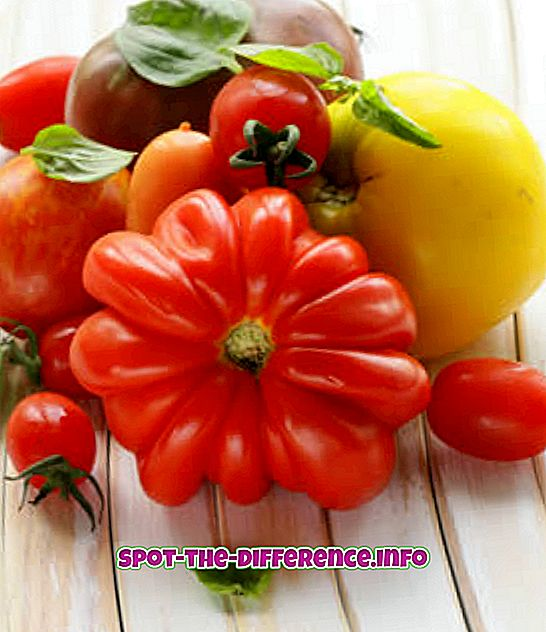 Các loại cà chua khác nhau