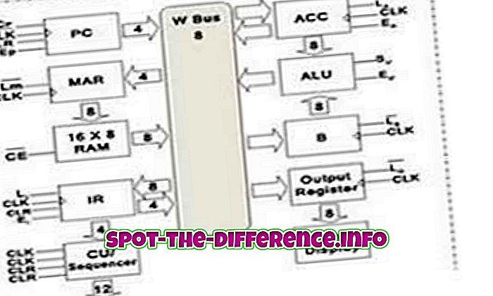 Diferența dintre SAP 1 și SAP 2