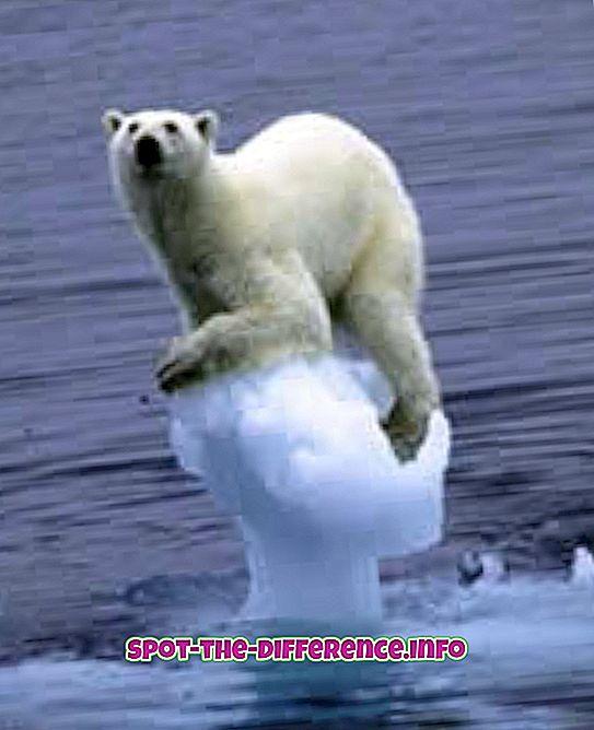 verschil tussen: Verschil tussen Global Warming en Greenhouse Effect