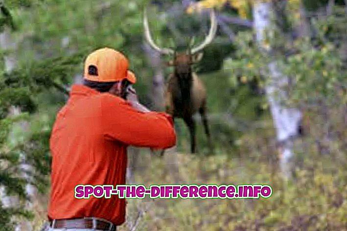 perbedaan antara: Perbedaan antara Berburu dan Perburuan
