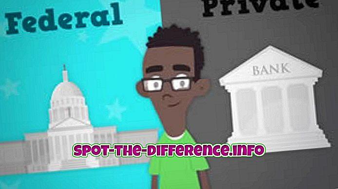 ความแตกต่างระหว่าง: ความแตกต่างระหว่างสินเชื่อของรัฐบาลกลางและเอกชน