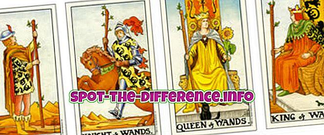 rozdiel medzi: Rozdiel medzi kartami Tarot a Oracle