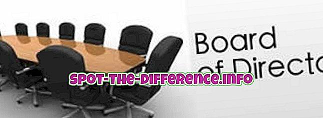 verschil tussen: Verschil tussen Raad van Bestuur en Management