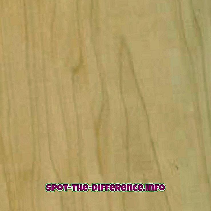 Sự khác biệt giữa Maple và Cherry Wood