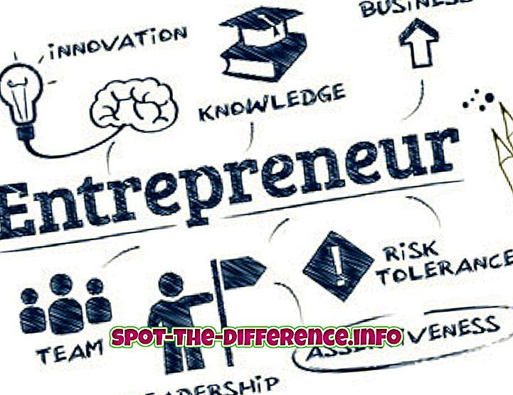 Forskel mellem iværksætter og manager